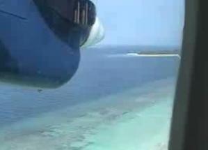 ロイヤル島1